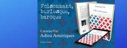 """""""Adieu Amériques"""", le nouveau roman de Caterina Viti"""