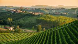Octobre 2018 : Escapade œno-gastronomique avec l'Italie à Toulouse